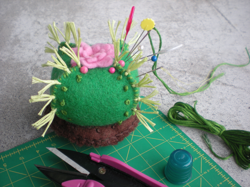 Prickly pin cushion