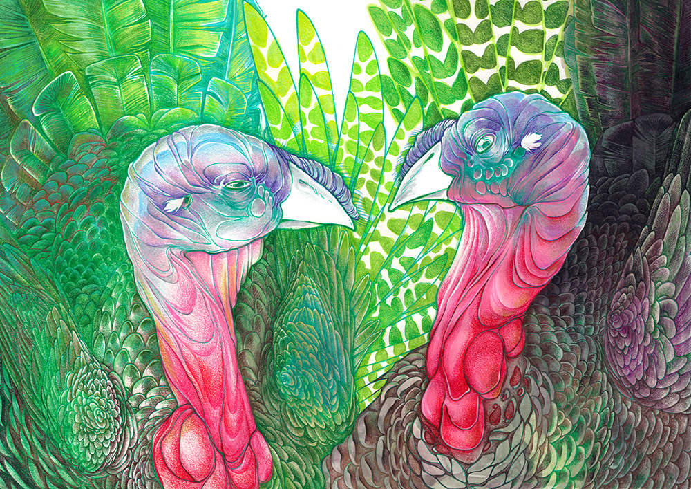 Green Turkeys 1 and 2